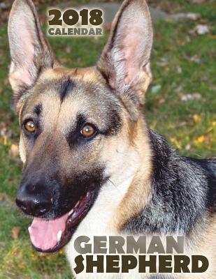 German Shepherd 2018...