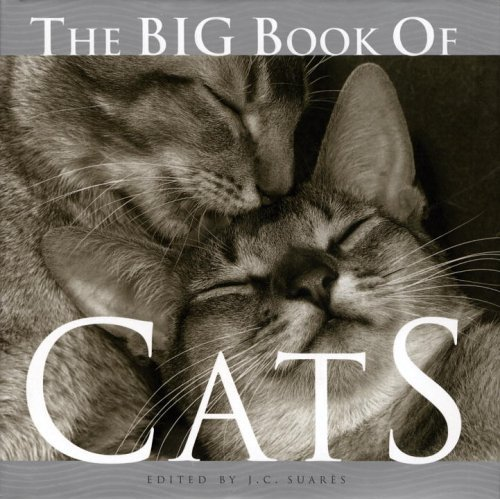 The Big Book of Cats