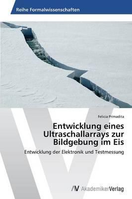 Entwicklung eines Ultraschallarrays zur Bildgebung im Eis