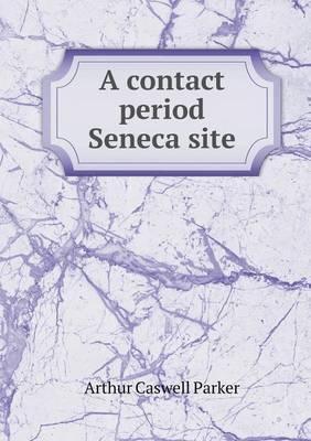 A Contact Period Seneca Site