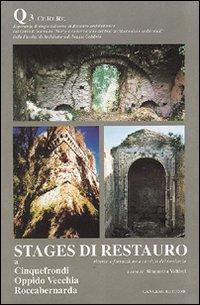 Stages di restauro. Quaderno