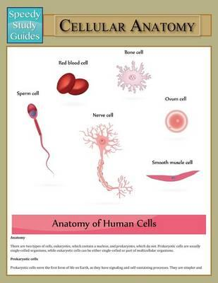 Cellular Anatomy (Speedy Study Guide)