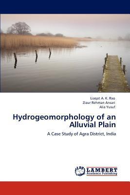 Hydrogeomorphology of an Alluvial Plain
