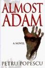 Almost Adam
