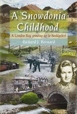 A Snowdonia Childhood