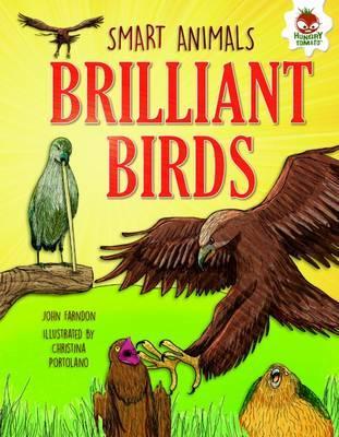 Smart Animals - Brilliant Birds