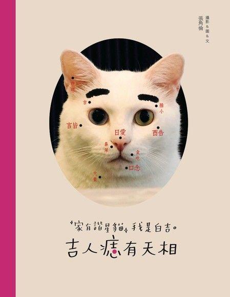 家有諧星貓我是白吉