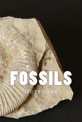 Fossils Notebook