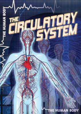 The Circulatory Syst...