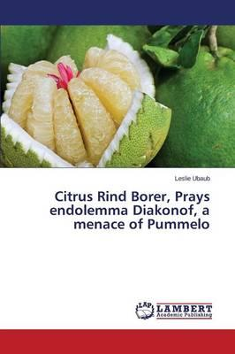 Citrus Rind Borer, Prays endolemma Diakonof, a menace of Pummelo