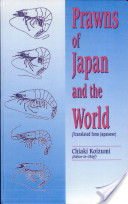 Prawns of Japan And the World