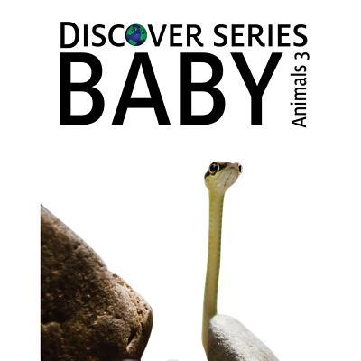 Baby Animals 3
