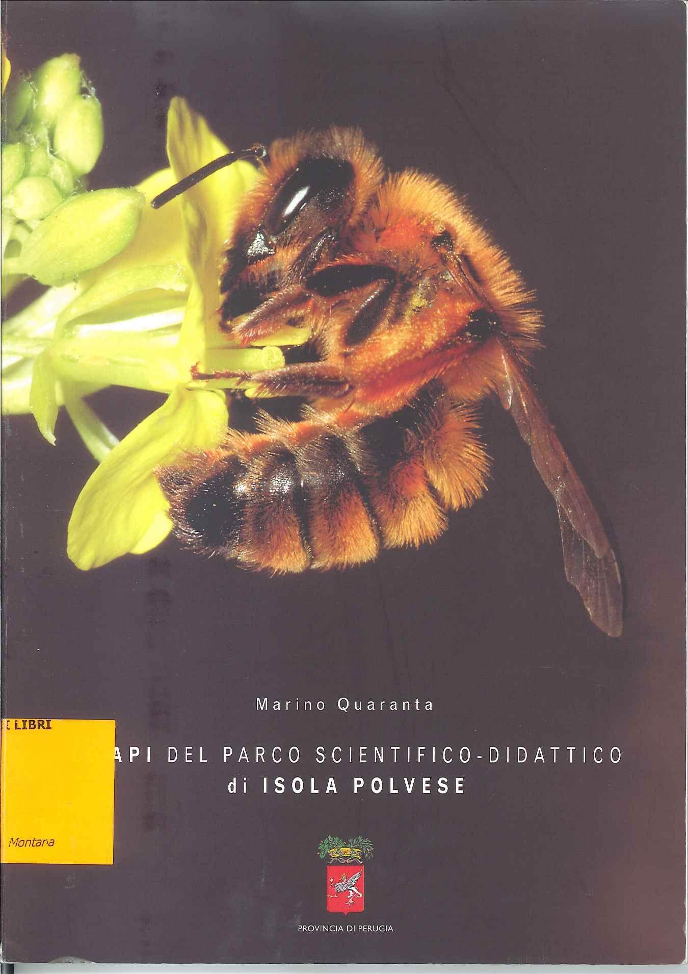 Le api del Parco scientifico-didattico di Isola Polvese