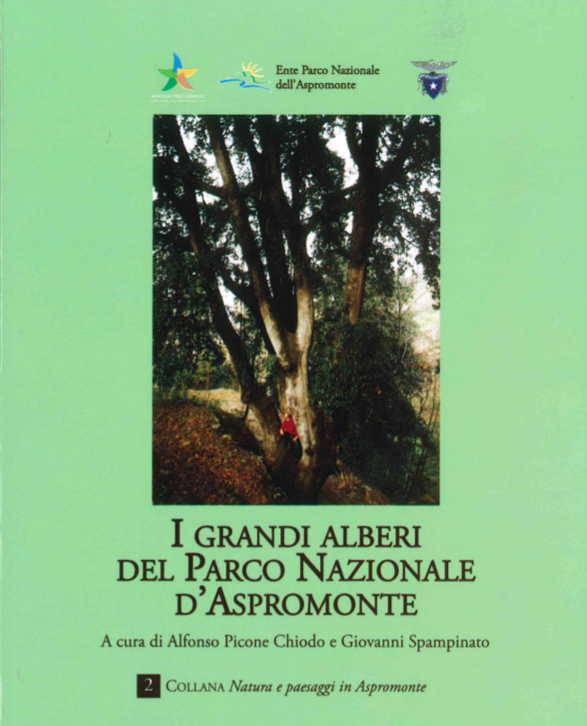 I grandi alberi del Parco Nazionale d'Aspromonte