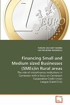 Financing Small and Medium sized Businesses (SMEs)in Rural areas