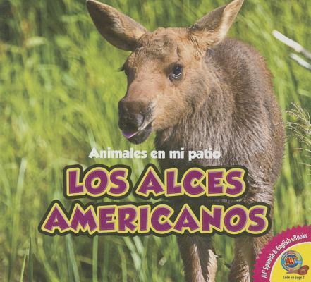 Los alces americanos / The Moose