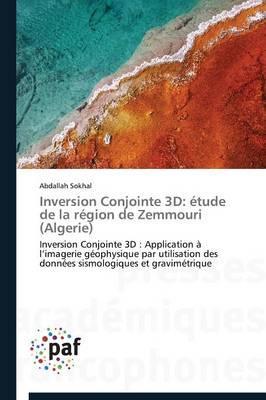 Inversion Conjointe 3D