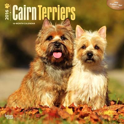 Cairn Terriers 2016 Calendar