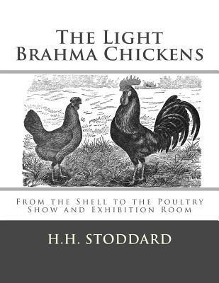 The Light Brahma Chickens (The Light Brahma Fowls)