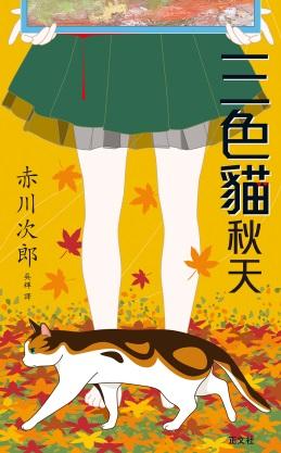三色貓秋天