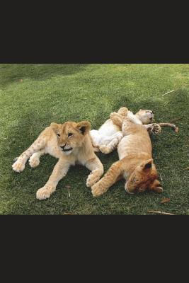 Three Lion Cubs Journal