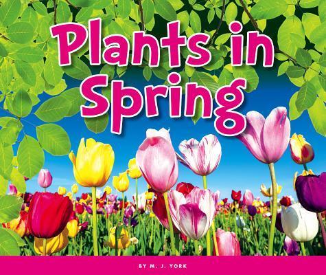 Plants in Spring