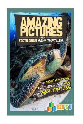 Amazing Pictures and Facts About Sea Turtles
