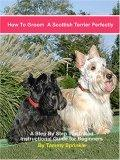 How to Groom a Scottish Terrier Perfectly