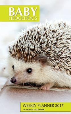 Baby Hedgehogs Weekly Planner 2017