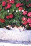 エーゲ海の猫―HAPPY CATS PARADISE