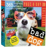 Bad Dog Page-A-Day Calendar 2008