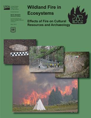 Wildand Fire in Ecos...