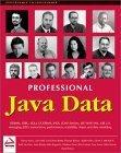 Professional Java Da...