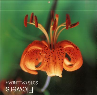 Flowers 2016 Calendar