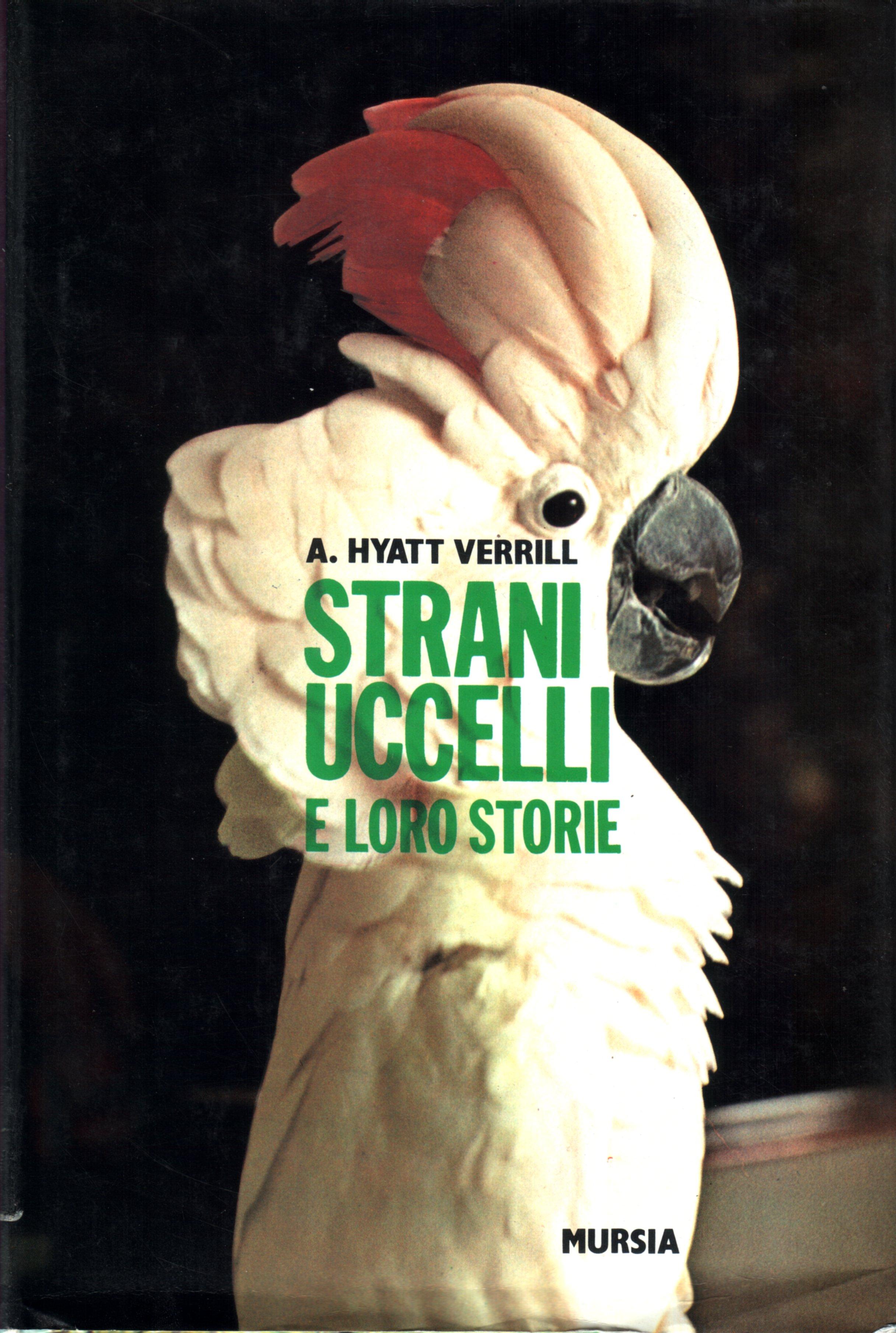 Strani uccelli e loro storie