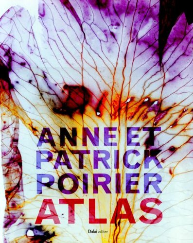 Anne e Patrick Poirier