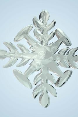 Snowflake 9 Lined Jo...