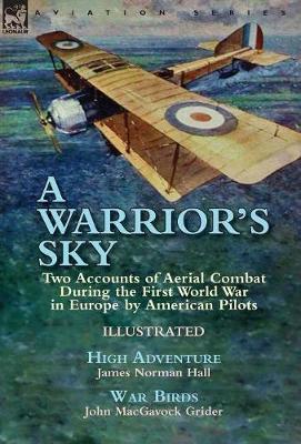A Warrior's Sky