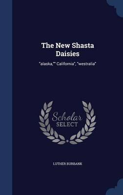 The New Shasta Daisies