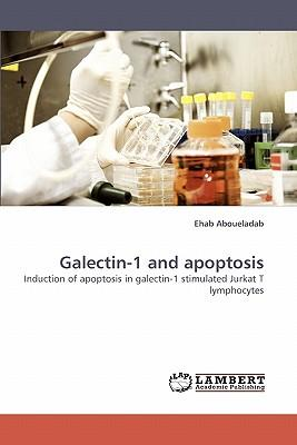 Galectin-1 and apoptosis