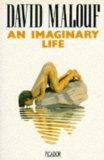 An Imaginary Life