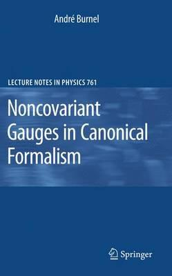Noncovariant Gauges in Canonical Formalism