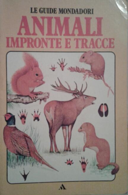 Animali impronte e tracce