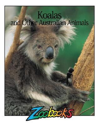 Koalas and Other Australian Animals