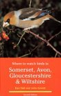Where to Watch Birds in Somerset, Avon, Gloucestershire and Wiltshire