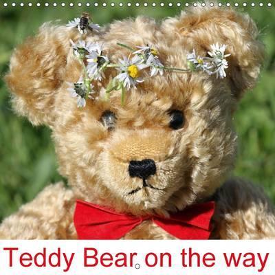 Teddy Bear on the way 2015