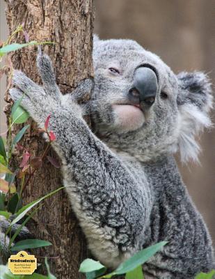 """WriteDrawDesign Notebook, Blank/Wide Ruled, 8.5 x 11"""", Koala Bear In A Tree"""