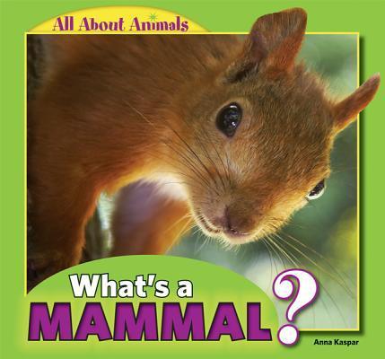 What's a Mammal?