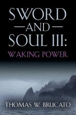SWORD AND SOUL III