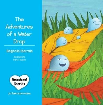 The Adventures of a Water Drop